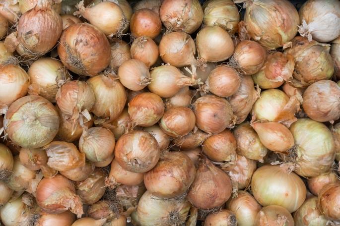 foodiesfeed.com_onions-on-onions-on-onions